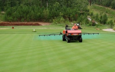 Calidad del Agua e Interacción con los Pesticidas